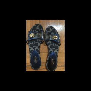Coach Navy Sandal